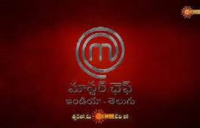 MasterChef Telugu auditions